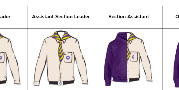Scouting section roles